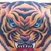 虎(タイガー) タトゥー
